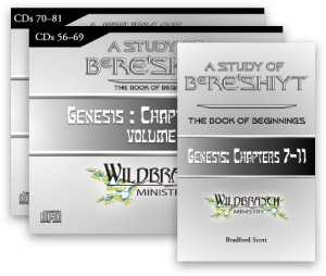A Study of Bereshiyt: The Book of Beginnings, Chapters 7-11